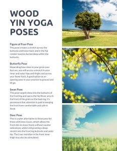 Wood Yin Yoga Poses - Yin yoga guide: In my Element